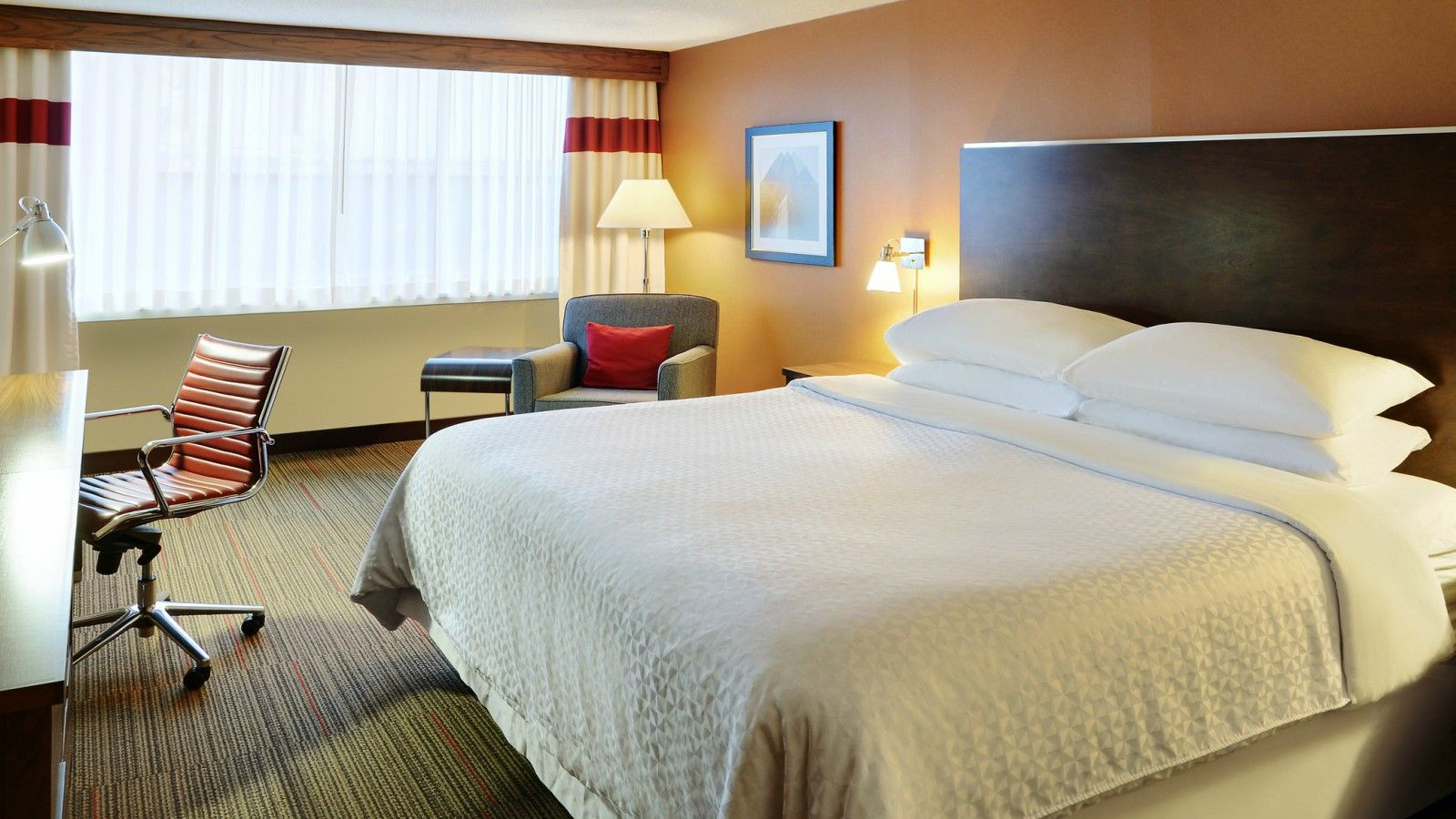 Four Points Halifax - King Guest Room